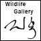 View wildlife gallery